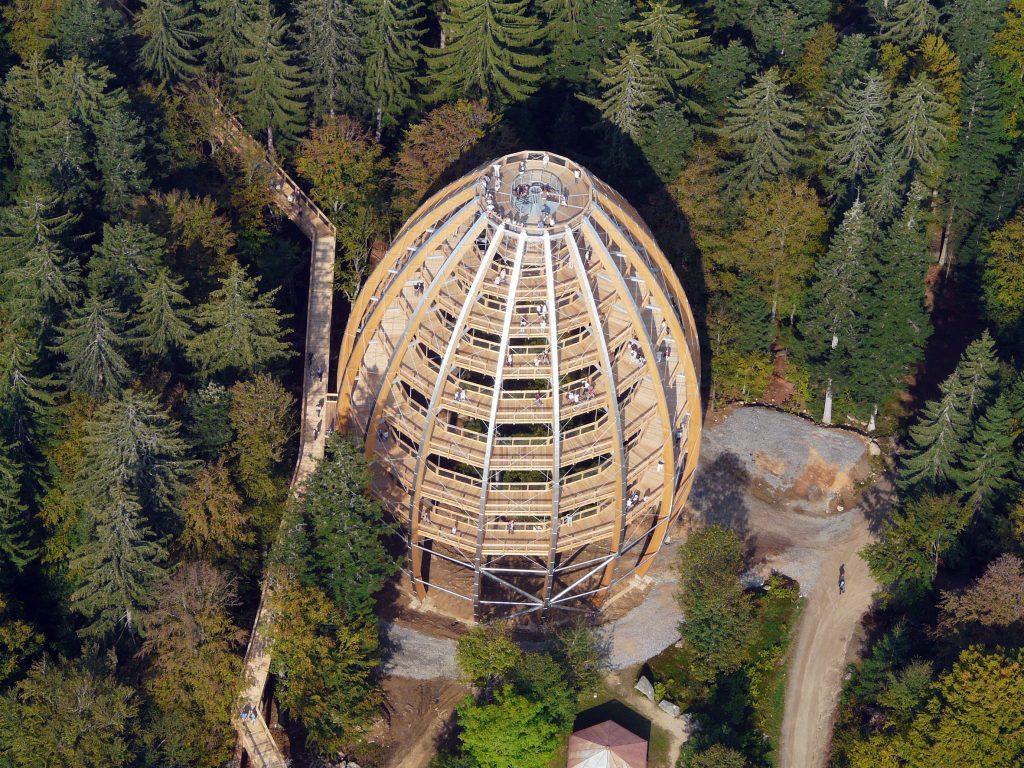 Baumturm Luftaufnahme