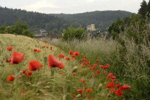 © Tourismusverband Ostbayern e.V., Fotograf Martin Gabriel
